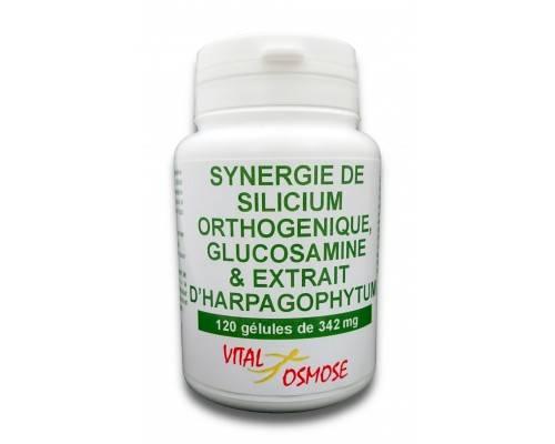 Pro'immune - 120 gélules