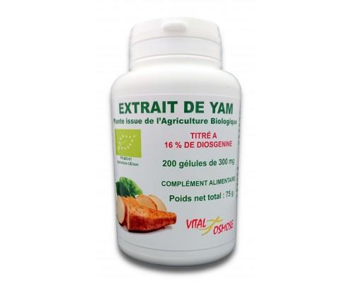 Harpagophytum Procumbens racine comprimés biologiques 450 mg
