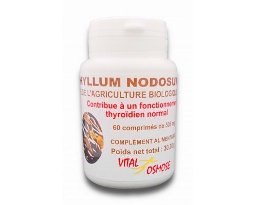 Passiflore comprimés biologiques 420 mg